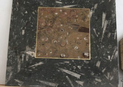 Square table top with fossils