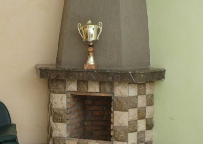 Fireplace with nautiluses